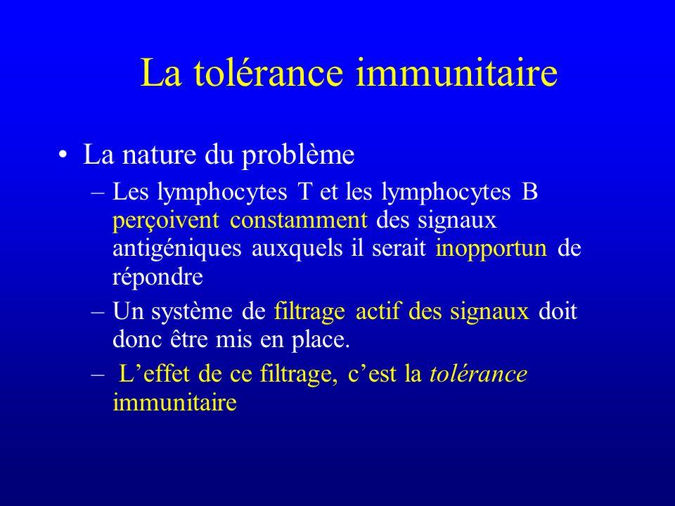 La tolérance immunitaire La nature du problème –Les lymphocytes T et les lymphocytes B perçoivent constamment des signaux antigéniques auxquels il ser
