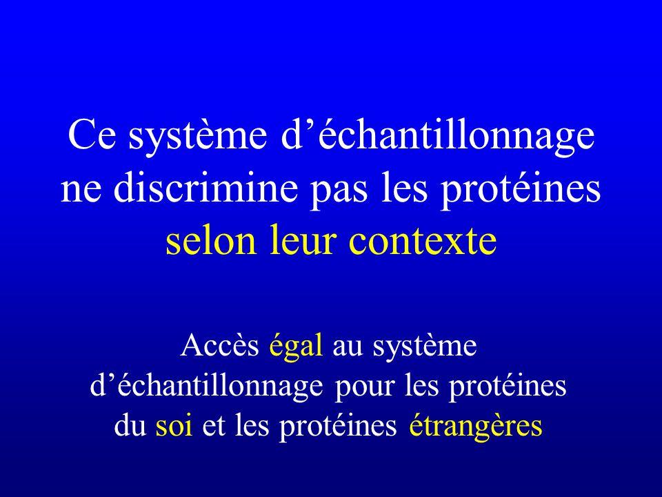 Ce système déchantillonnage ne discrimine pas les protéines selon leur contexte Accès égal au système déchantillonnage pour les protéines du soi et le