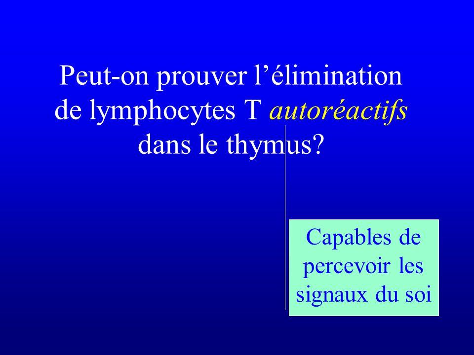 Peut-on prouver lélimination de lymphocytes T autoréactifs dans le thymus? Capables de percevoir les signaux du soi