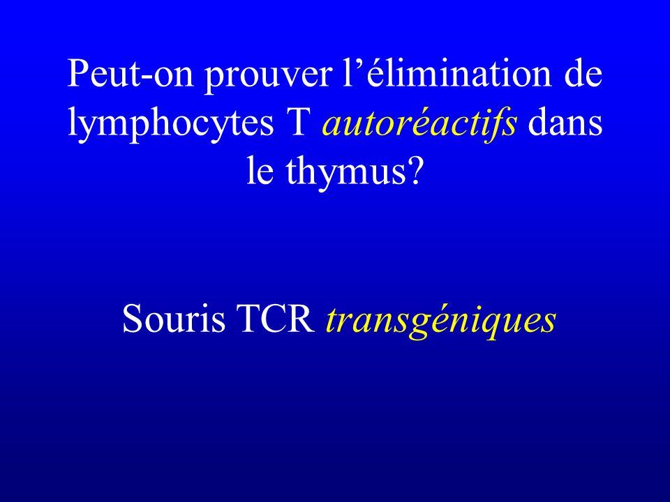 Peut-on prouver lélimination de lymphocytes T autoréactifs dans le thymus? Souris TCR transgéniques
