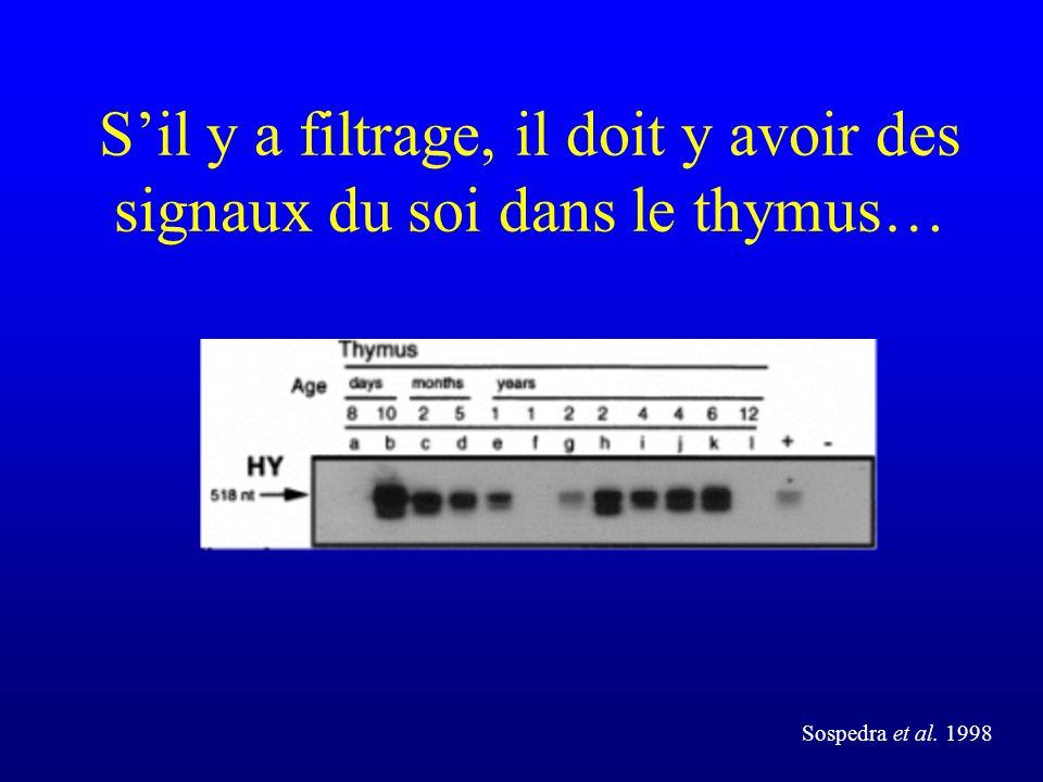 Sil y a filtrage, il doit y avoir des signaux du soi dans le thymus… Sospedra et al. 1998