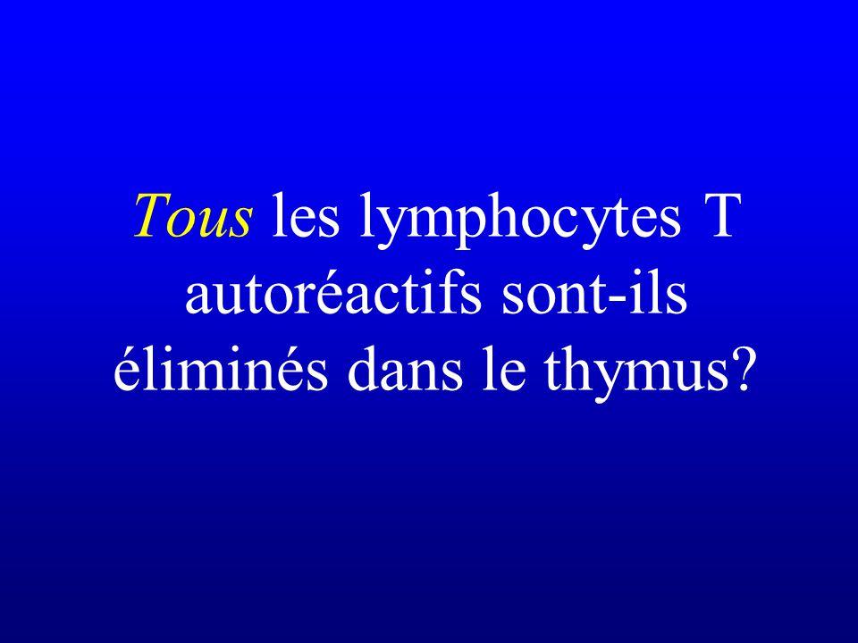 Tous les lymphocytes T autoréactifs sont-ils éliminés dans le thymus?