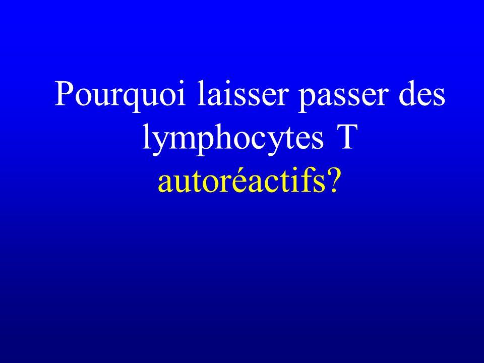 Pourquoi laisser passer des lymphocytes T autoréactifs?