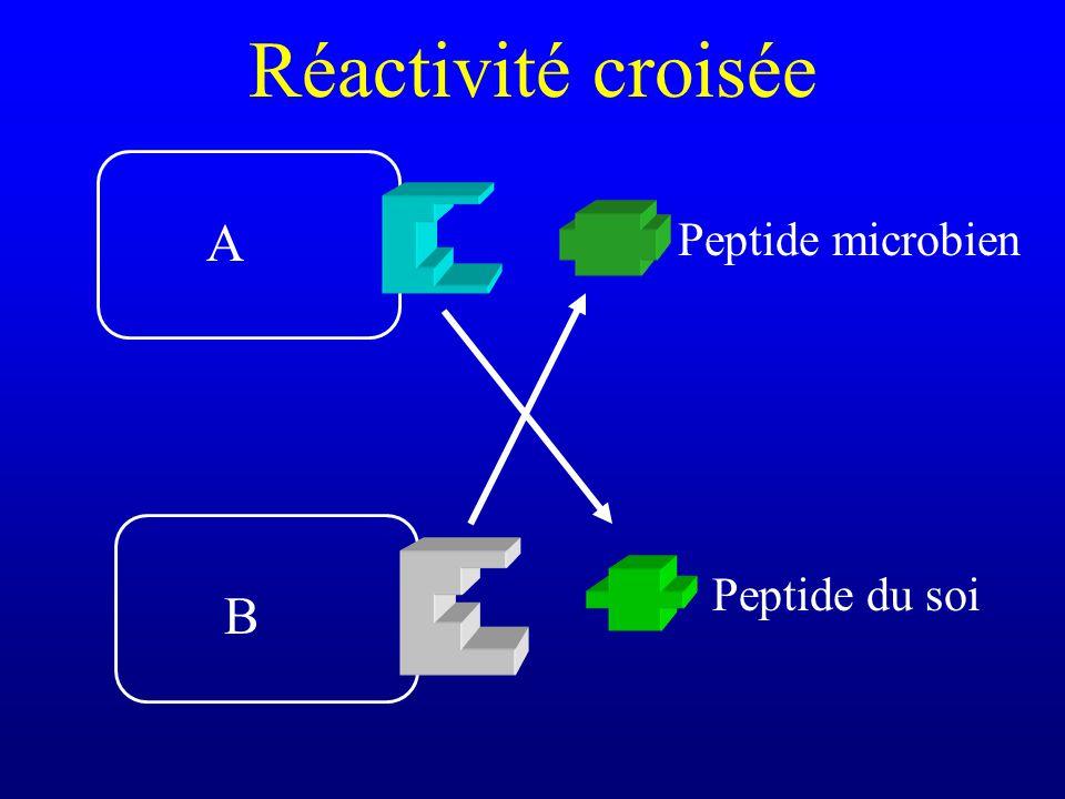 Réactivité croisée Peptide du soi Peptide microbien A B