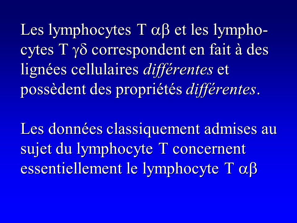 Lymphocytes T Lymphocytes T Echappent aux phénomènes de sélection