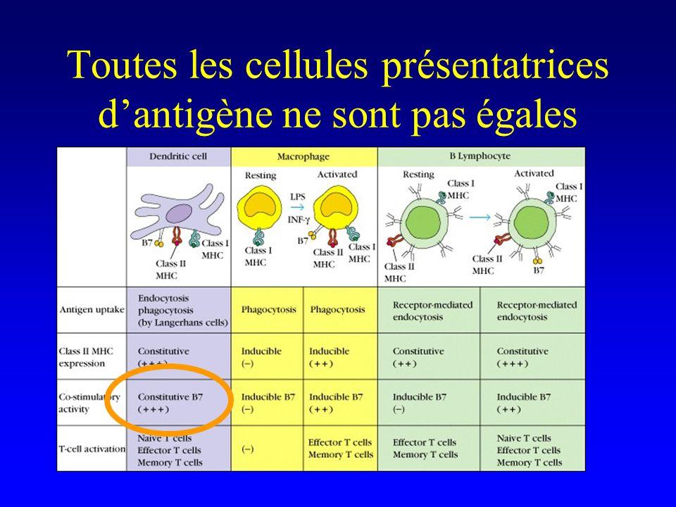 Toutes les cellules présentatrices dantigène ne sont pas égales