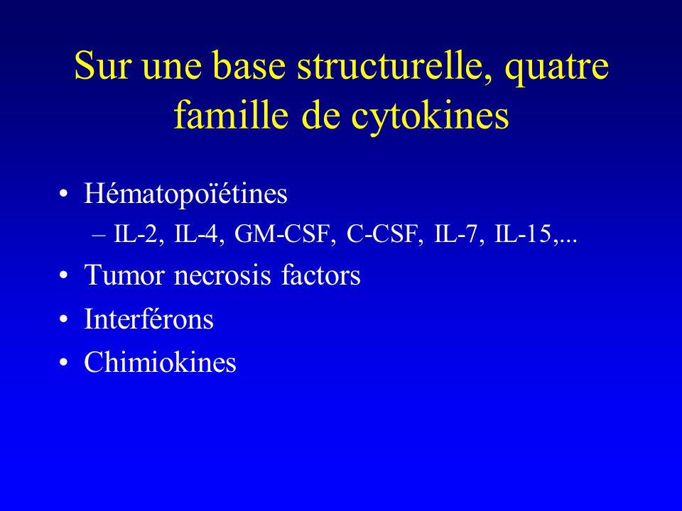 Sur une base structurelle, quatre famille de cytokines Hématopoïétines –IL-2, IL-4, GM-CSF, C-CSF, IL-7, IL-15,... Tumor necrosis factors Interférons