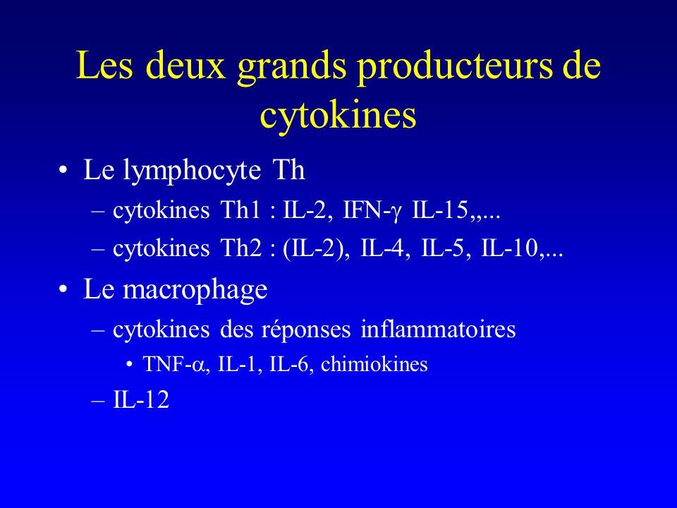 Les deux grands producteurs de cytokines Le lymphocyte Th –cytokines Th1 : IL-2, IFN- IL-15,,... –cytokines Th2 : (IL-2), IL-4, IL-5, IL-10,... Le mac