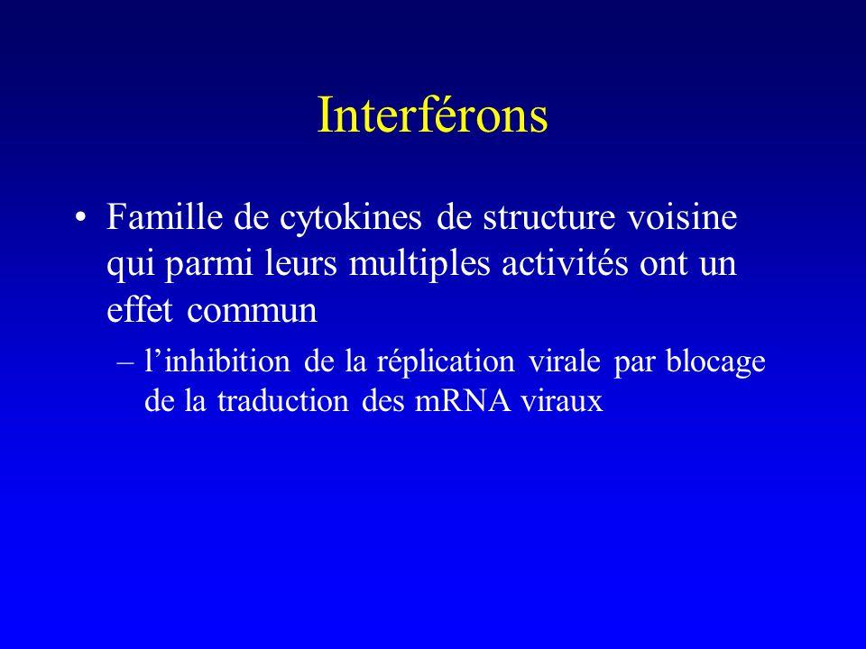Interférons Famille de cytokines de structure voisine qui parmi leurs multiples activités ont un effet commun –linhibition de la réplication virale pa