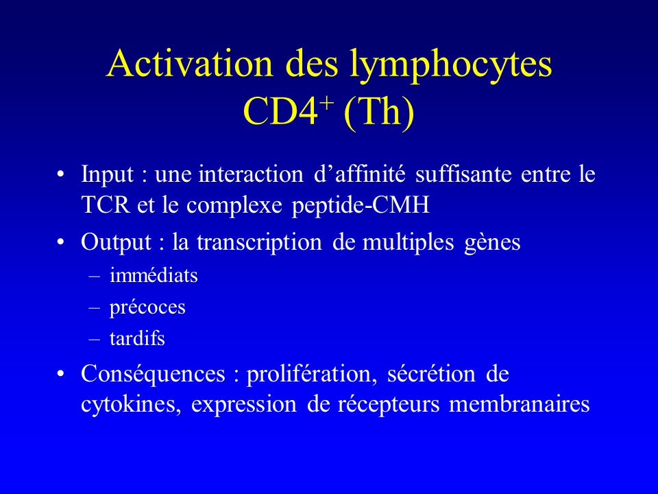 Activation des lymphocytes CD4 + (Th) Input : une interaction daffinité suffisante entre le TCR et le complexe peptide-CMH Output : la transcription d