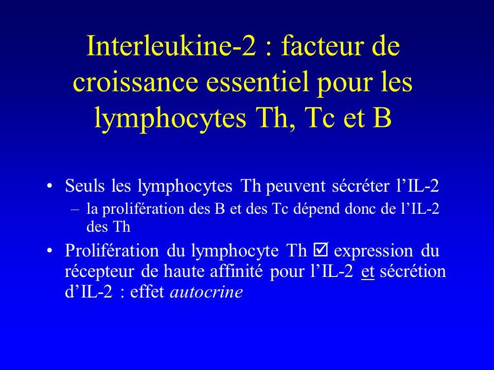 Interleukine-2 : facteur de croissance essentiel pour les lymphocytes Th, Tc et B Seuls les lymphocytes Th peuvent sécréter lIL-2 –la prolifération de