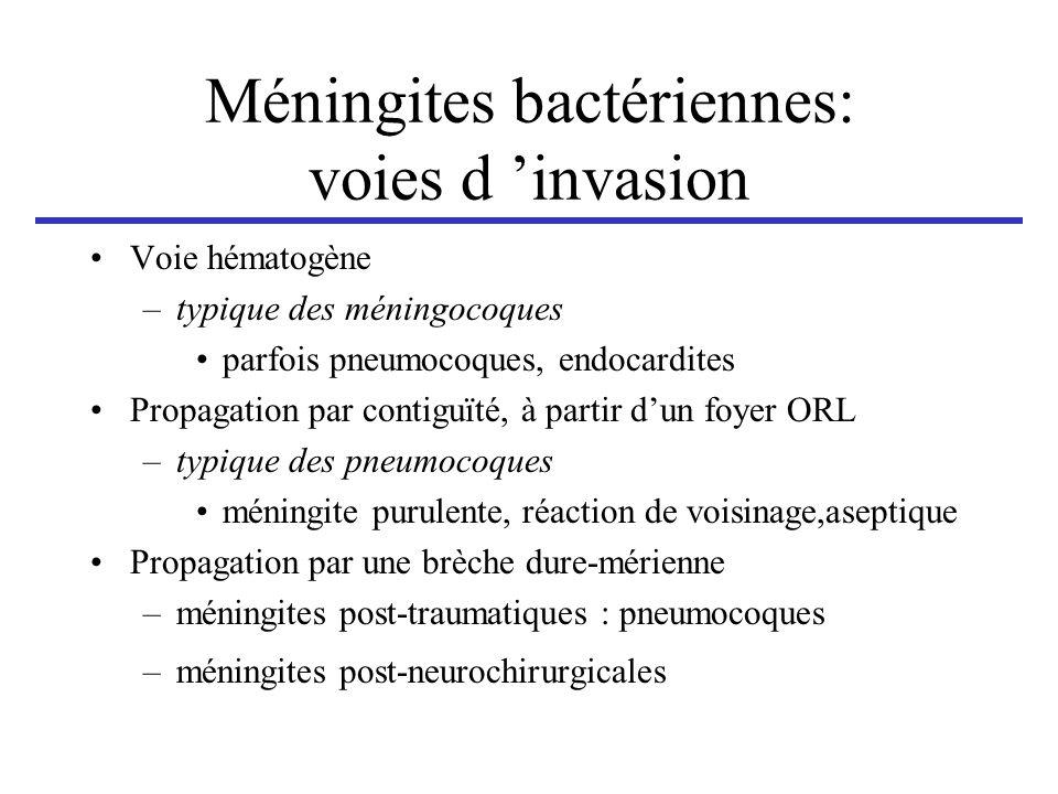 Méningites bactériennes: voies d invasion Voie hématogène –typique des méningocoques parfois pneumocoques, endocardites Propagation par contiguïté, à