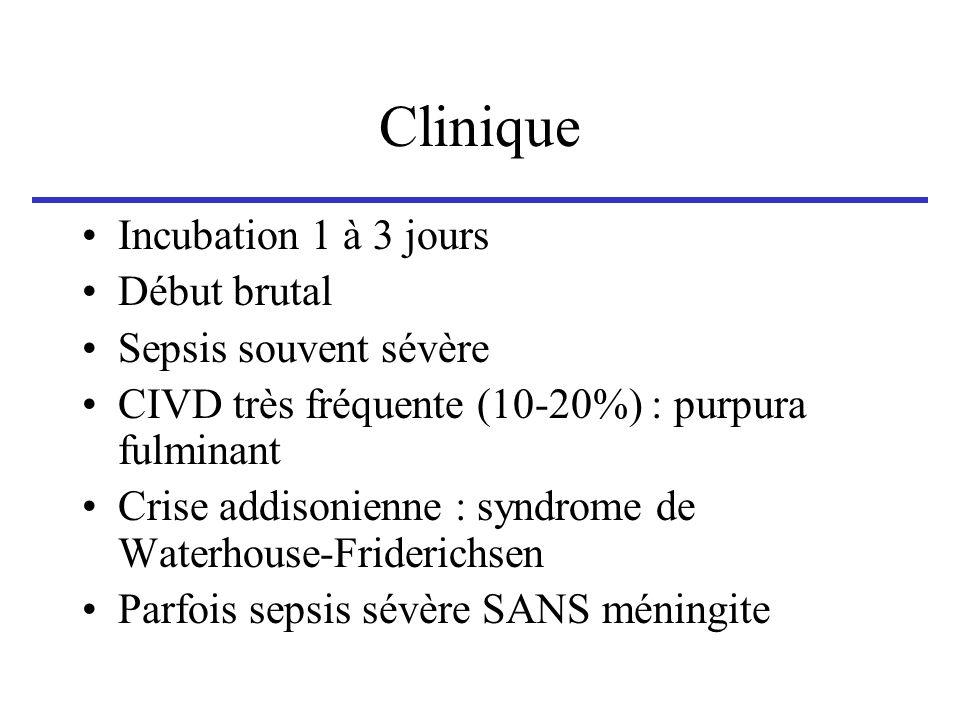 Clinique Incubation 1 à 3 jours Début brutal Sepsis souvent sévère CIVD très fréquente (10-20%) : purpura fulminant Crise addisonienne : syndrome de W