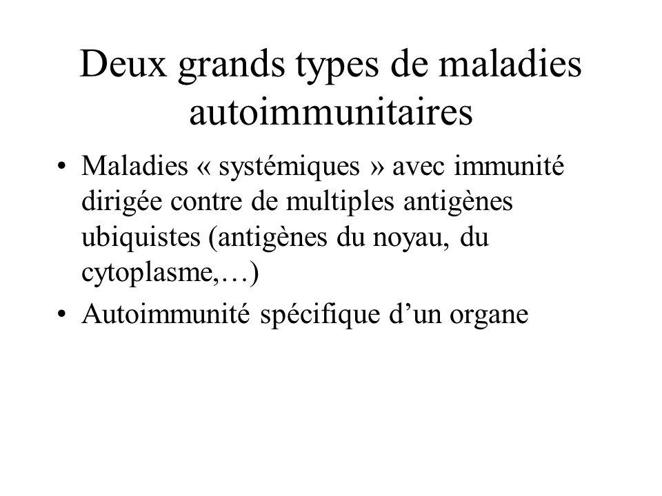 Deux grands types de maladies autoimmunitaires Maladies « systémiques » avec immunité dirigée contre de multiples antigènes ubiquistes (antigènes du noyau, du cytoplasme,…) Autoimmunité spécifique dun organe