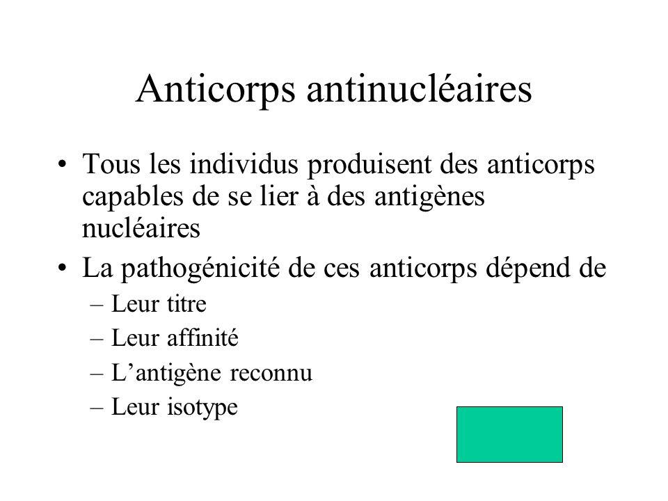 Anticorps antinucléaires Tous les individus produisent des anticorps capables de se lier à des antigènes nucléaires La pathogénicité de ces anticorps dépend de –Leur titre –Leur affinité –Lantigène reconnu –Leur isotype