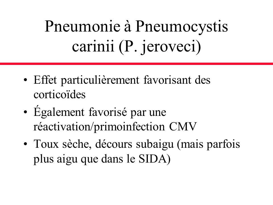 Pneumonie à Pneumocystis carinii (P. jeroveci) Effet particulièrement favorisant des corticoïdes Également favorisé par une réactivation/primoinfectio