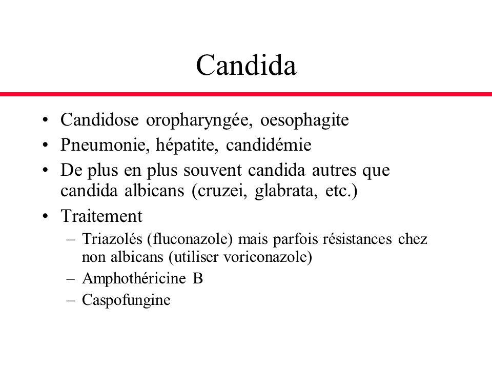 Candida Candidose oropharyngée, oesophagite Pneumonie, hépatite, candidémie De plus en plus souvent candida autres que candida albicans (cruzei, glabr