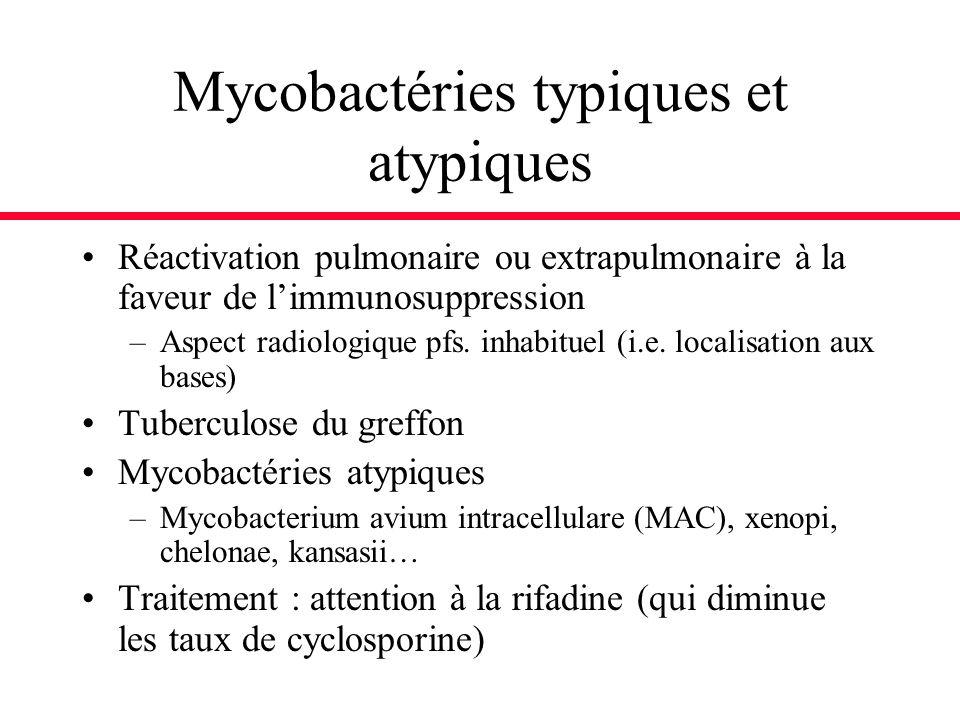 Mycobactéries typiques et atypiques Réactivation pulmonaire ou extrapulmonaire à la faveur de limmunosuppression –Aspect radiologique pfs. inhabituel