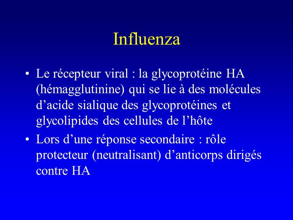 Mais variations antigéniques majeures dinfluenza.