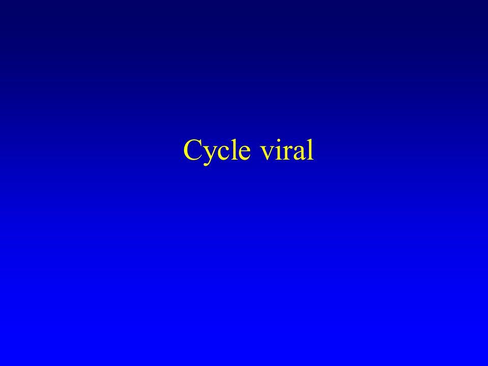 Charge virale « le nombre de copies de RNA viral présentes dans le plasma » –On présume que cette valeur est directement liée au niveau global de réplication du VIH dans lorganisme –Plusieurs types de tests basés sur lamplification des acides nucléiques Amplification de la cible Amplification du signal