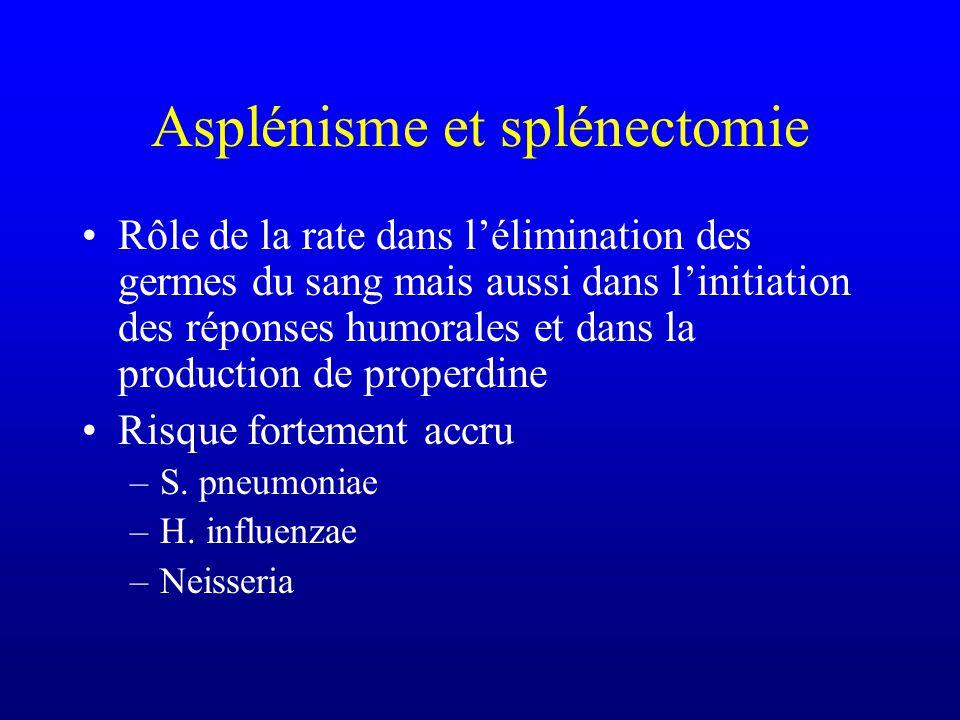 Asplénisme et splénectomie Rôle de la rate dans lélimination des germes du sang mais aussi dans linitiation des réponses humorales et dans la producti