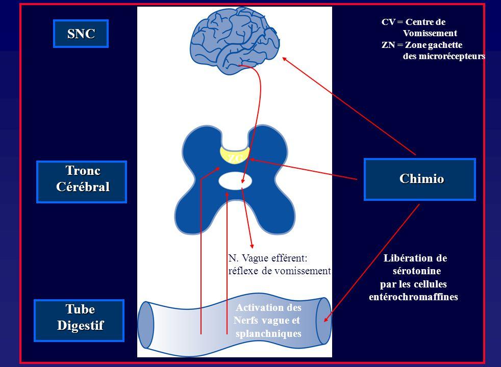 CV = Centre de Vomissement ZN = Zone gachette des microrécepteurs Tronc Cérébral Activation des Nerfs vague et splanchniques Libération de sérotonine