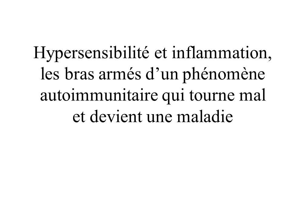 Hypersensibilité et inflammation, les bras armés dun phénomène autoimmunitaire qui tourne mal et devient une maladie