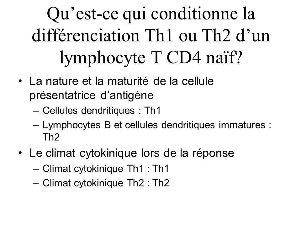 Quest-ce qui conditionne la différenciation Th1 ou Th2 dun lymphocyte T CD4 naïf? La nature et la maturité de la cellule présentatrice dantigène –Cell
