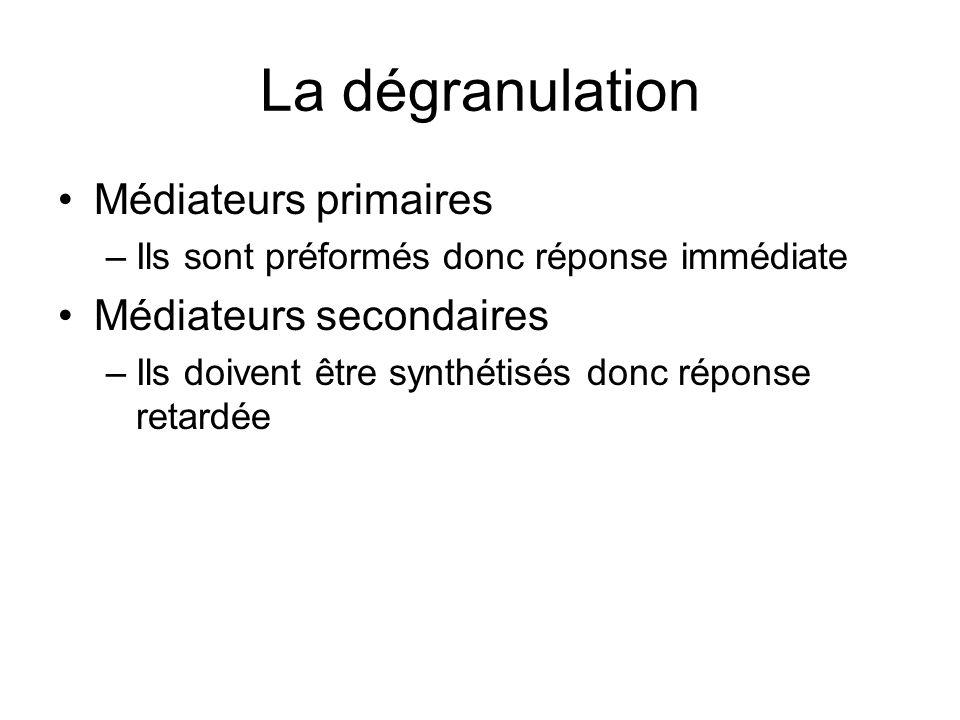 La dégranulation Médiateurs primaires –Ils sont préformés donc réponse immédiate Médiateurs secondaires –Ils doivent être synthétisés donc réponse ret