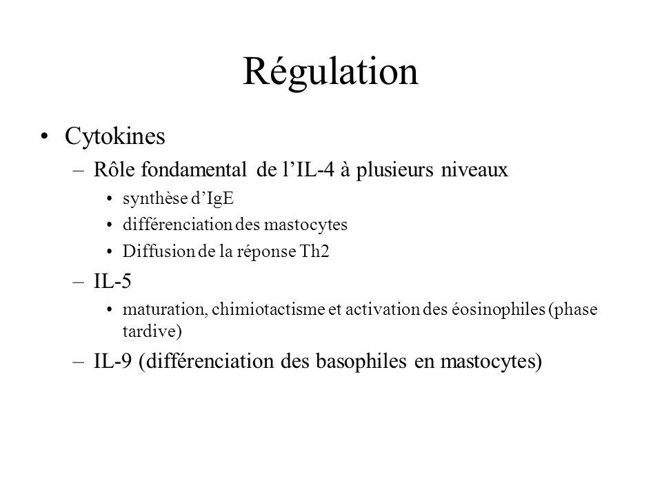 Régulation Cytokines –Rôle fondamental de lIL-4 à plusieurs niveaux synthèse dIgE différenciation des mastocytes Diffusion de la réponse Th2 –IL-5 mat