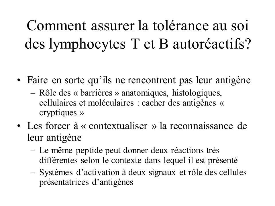 Comment assurer la tolérance au soi des lymphocytes T et B autoréactifs? Faire en sorte quils ne rencontrent pas leur antigène –Rôle des « barrières »