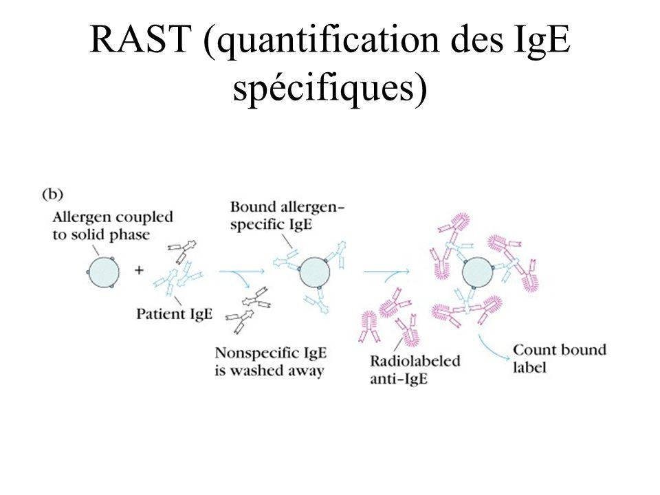 RAST (quantification des IgE spécifiques)