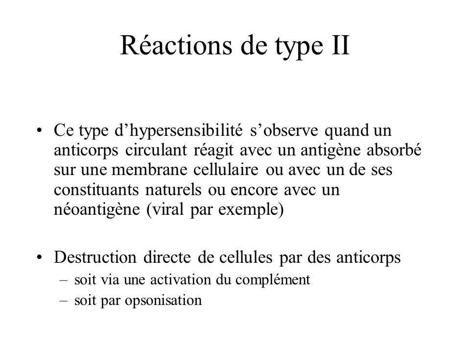 Réactions de type II Ce type dhypersensibilité sobserve quand un anticorps circulant réagit avec un antigène absorbé sur une membrane cellulaire ou av