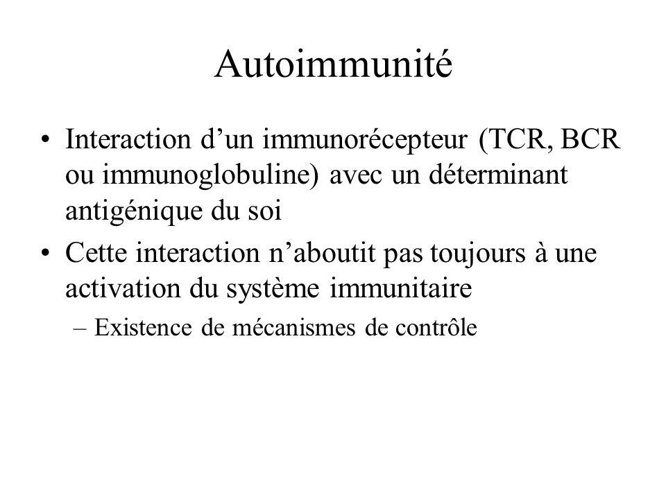 Autoimmunité Interaction dun immunorécepteur (TCR, BCR ou immunoglobuline) avec un déterminant antigénique du soi Cette interaction naboutit pas toujo
