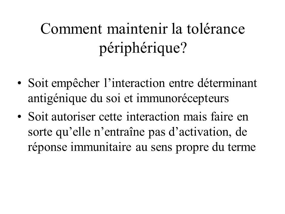 Comment maintenir la tolérance périphérique? Soit empêcher linteraction entre déterminant antigénique du soi et immunorécepteurs Soit autoriser cette