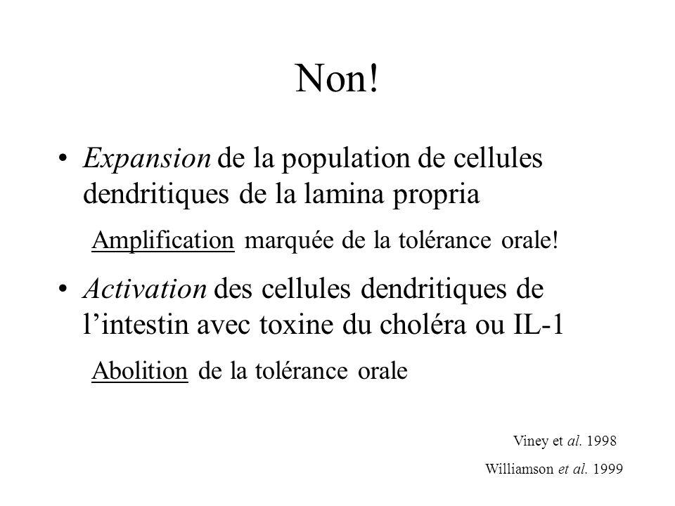 Non! Expansion de la population de cellules dendritiques de la lamina propria Amplification marquée de la tolérance orale! Activation des cellules den