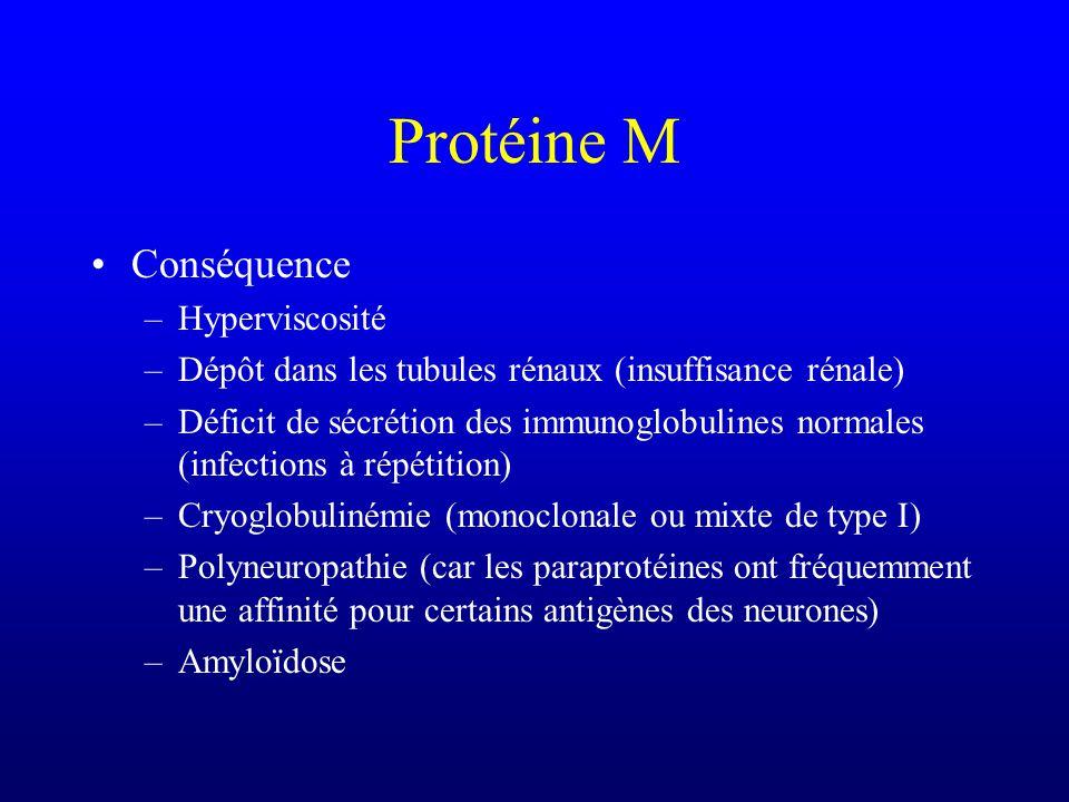 Protéine M Conséquence –Hyperviscosité –Dépôt dans les tubules rénaux (insuffisance rénale) –Déficit de sécrétion des immunoglobulines normales (infec