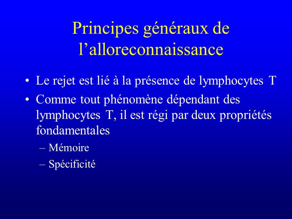 Principes généraux de lalloreconnaissance Le rejet est lié à la présence de lymphocytes T Comme tout phénomène dépendant des lymphocytes T, il est rég