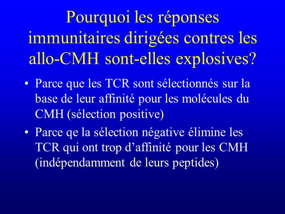 Pourquoi les réponses immunitaires dirigées contres les allo-CMH sont-elles explosives? Parce que les TCR sont sélectionnés sur la base de leur affini