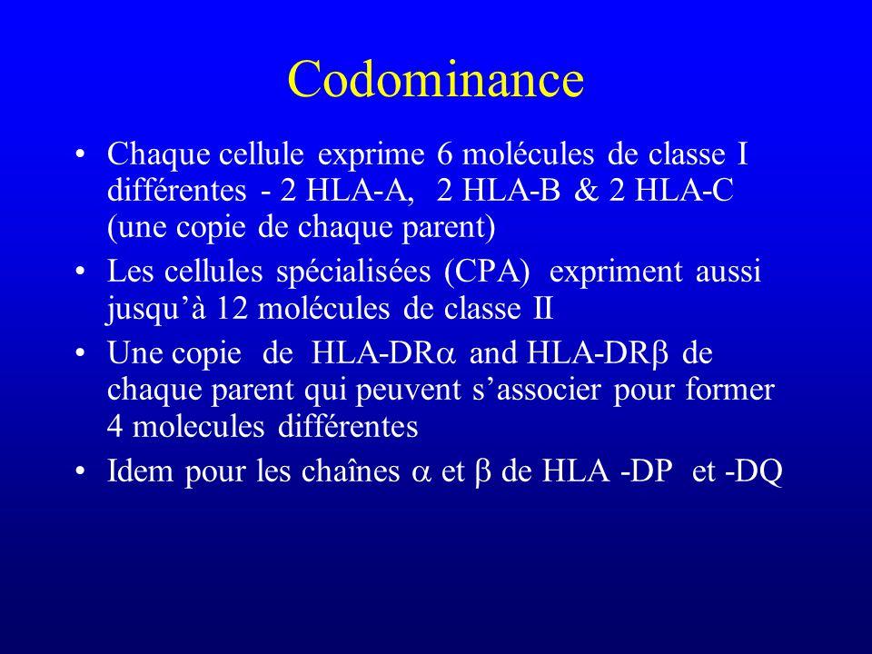 Codominance Chaque cellule exprime 6 molécules de classe I différentes - 2 HLA-A, 2 HLA-B & 2 HLA-C (une copie de chaque parent) Les cellules spéciali