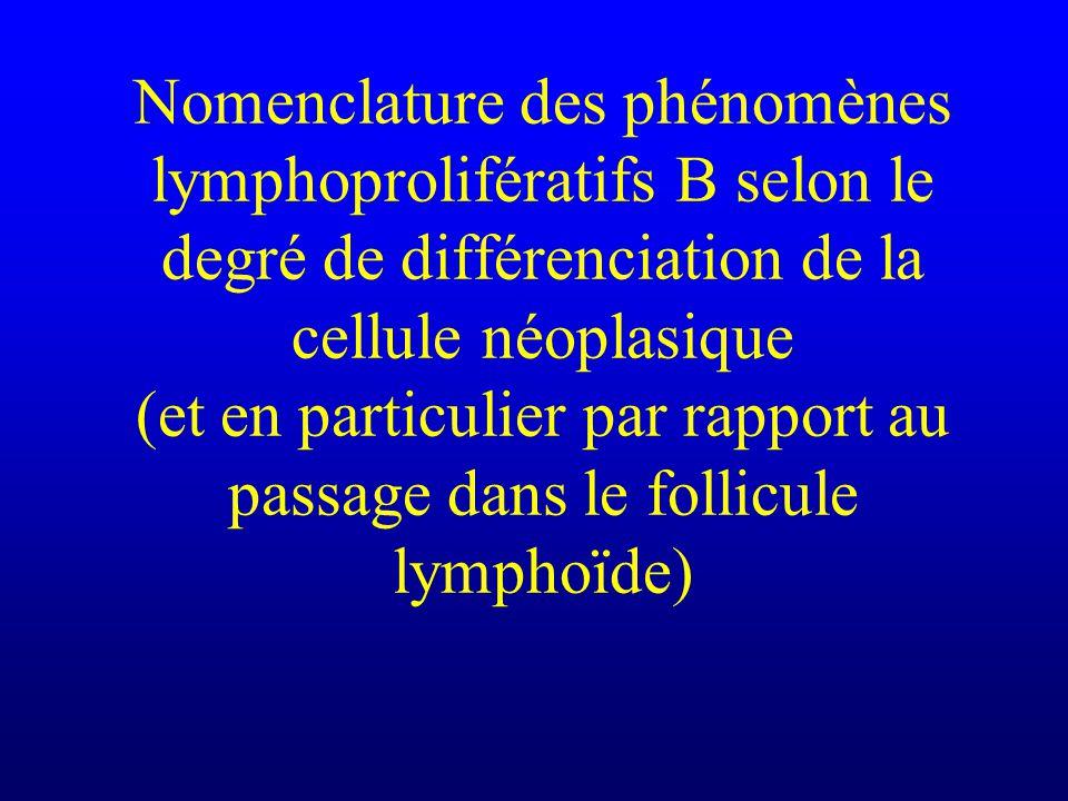 Nomenclature des phénomènes lymphoprolifératifs B selon le degré de différenciation de la cellule néoplasique (et en particulier par rapport au passag