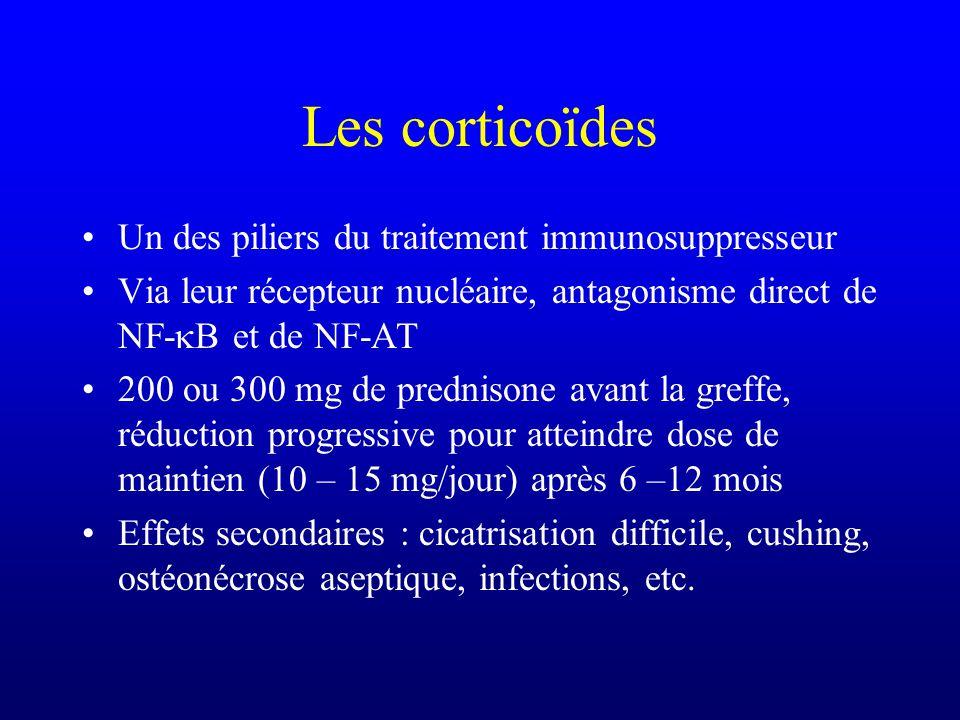 Les corticoïdes Un des piliers du traitement immunosuppresseur Via leur récepteur nucléaire, antagonisme direct de NF- B et de NF-AT 200 ou 300 mg de