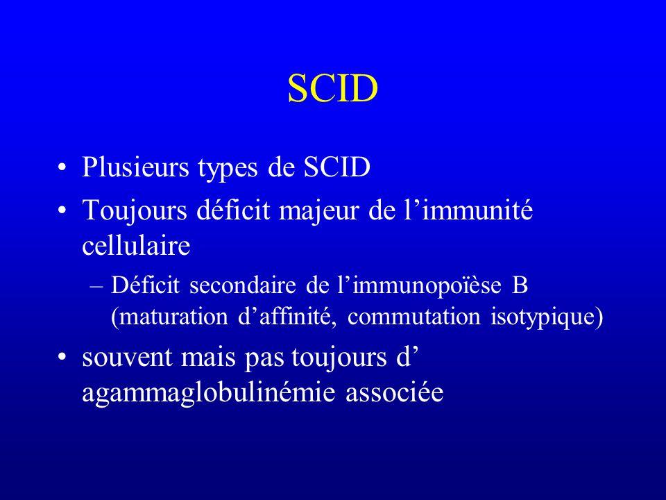 SCID : déficits immunitaires combinés (B+T) sévères