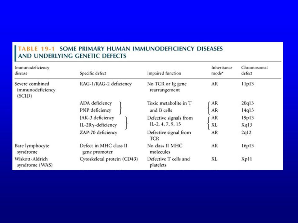 SCID Présentation –Infections TRES précoces (après la naissance) Virales (RSV, CMV, entérovirus, parainfluenza) Parasitaires (Pneumocystis carinii) My