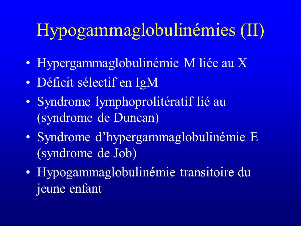 Hypogammaglobulinémies (I) Hypogammaglobulinémie liée au X (XLA- maladie de Bruton) Hypogammaglobulinémie commune variable (CVI) Déficit sélectif en I
