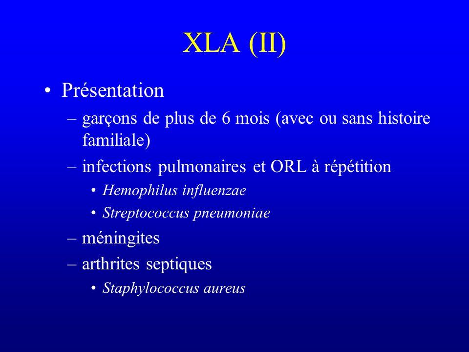 XLA (Bruton) Etiologie –tyrosine kinase de Bruton (PTK famille TEK) –Xq21.3-22 –délétions et mutations ponctuelles –pénétrance variable –mutations fré