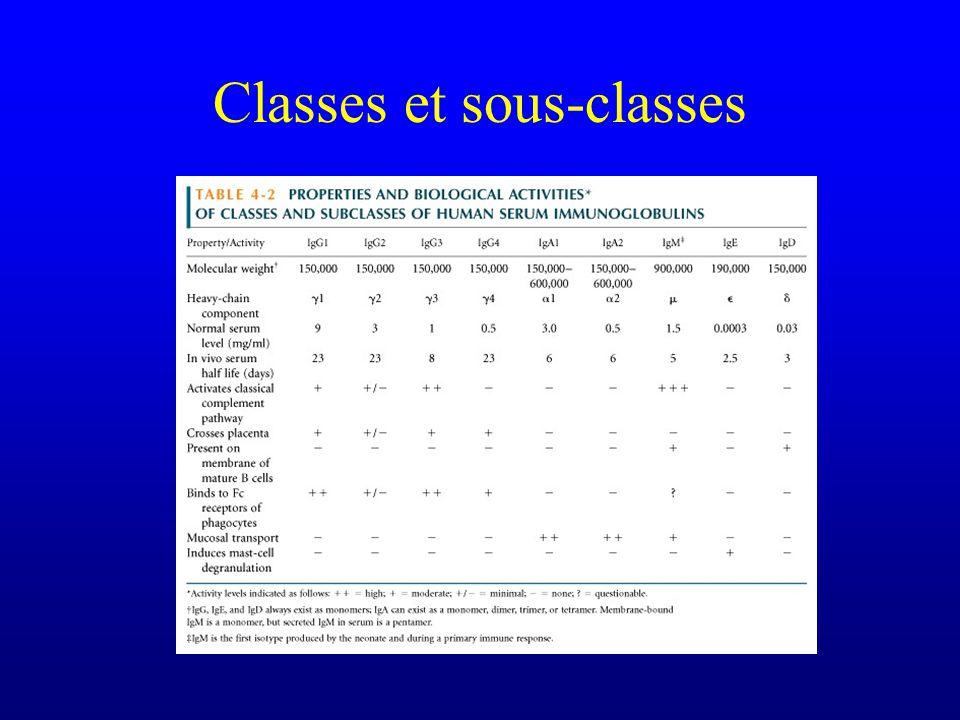 Déficit sélectif en sous-classes dIgG Etiologie –? –Même famille que CVID et déficit IgA (B8DR3) –Attention : variations allotypiques (allotypes Gm) e