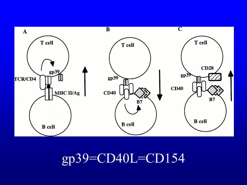 Hypogammaglobulinémies rares X-linked hyperIgM –Déficit de commutation isotypique (IgM et IgD élevées, IgG, A et E basses) –Déficit en CD40L sur lymph