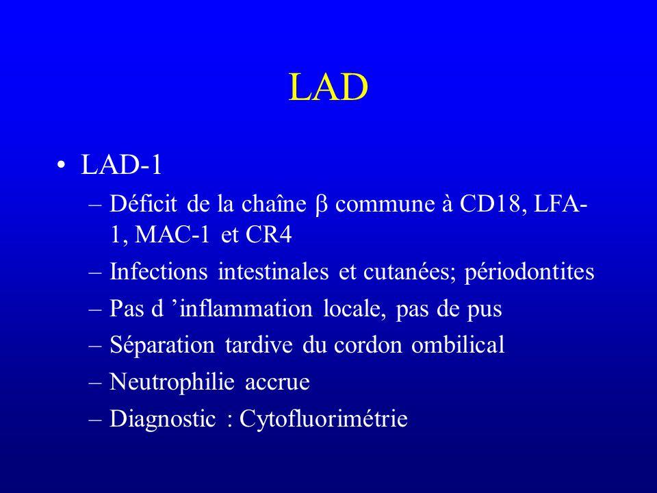 CGD Déficit de bactéricidie intracellulaire (explosion respiratoire insuffisante) Infections à germes catalase + (Staph. aureus, Aspergillus, Nocardia