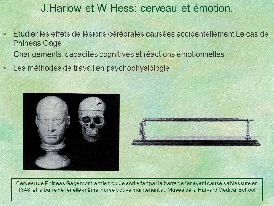 J.Harlow et W Hess: cerveau et émotion. Étudier les effets de lésions cérébrales causées accidentellement Le cas de Phineas Gage Changements: capacité